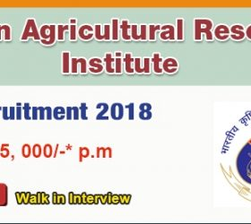 IARI Walk-in-Interview 2018 for SRF/Young Professionals